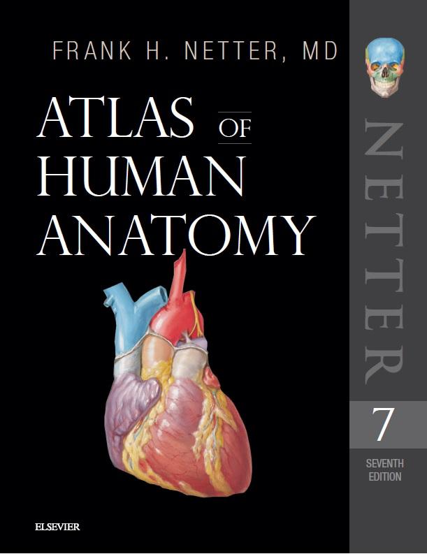 دانلود-رایگان-کتاب-آناتومی-گری